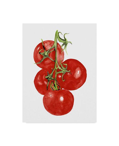 "Trademark Global Naomi Mccavitt Watercolor Veggie IV Canvas Art - 37"" x 49"""