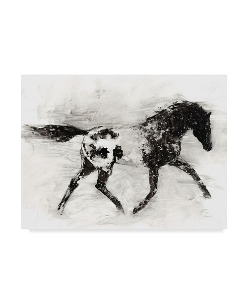 "Trademark Global Ethan Harper Rustic Appaloosa I Canvas Art - 20"" x 25"""