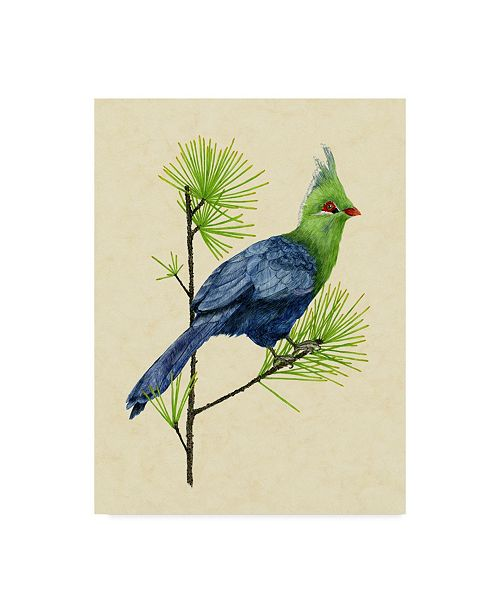 "Trademark Global Melissa Wang Green Turaco I Canvas Art - 20"" x 25"""