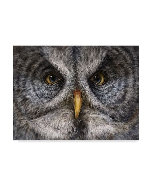 "Trademark Global Patrick Lamontagne Great Grey Owl Totem Canvas Art - 20"" x 25"""