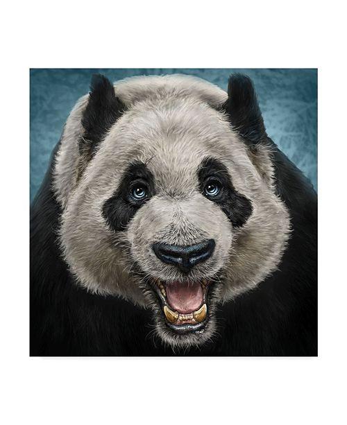 "Trademark Global Patrick Lamontagne Panda Face Canvas Art - 15"" x 20"""