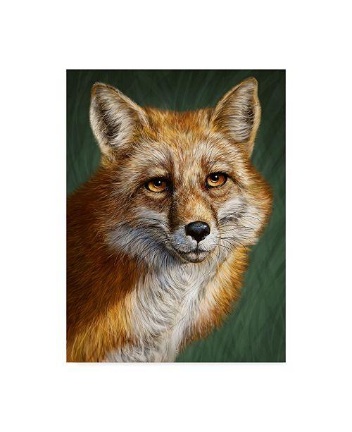 "Trademark Global Patrick Lamontagne Red Fox Totem Canvas Art - 15"" x 20"""