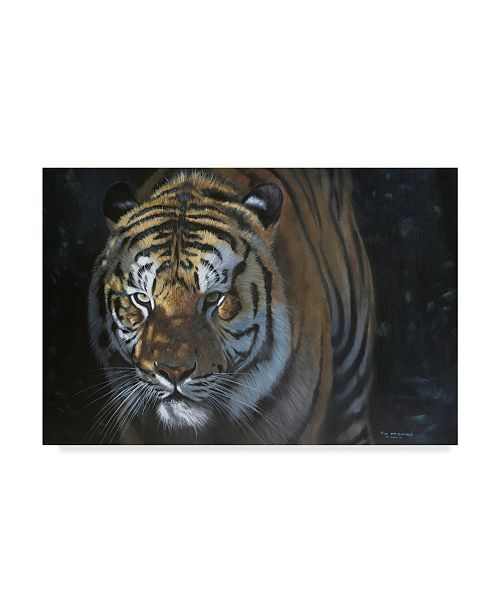 """Trademark Global Pip Mcgarry Out of the Shadows Tiger Canvas Art - 20"""" x 25"""""""