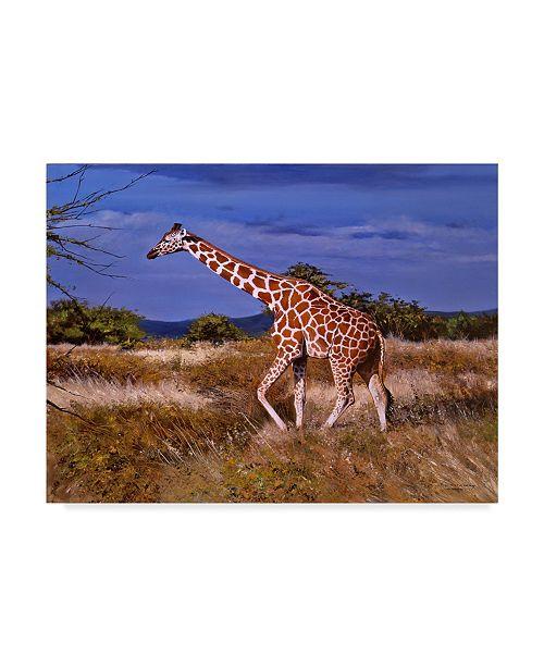 "Trademark Global Pip Mcgarry Reticulated Giraffe Canvas Art - 15"" x 20"""