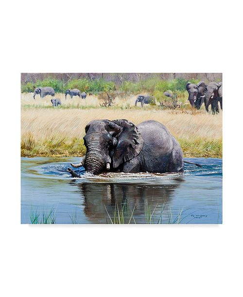 "Trademark Global Pip Mcgarry Elephant, Okavango Delta Canvas Art - 20"" x 25"""
