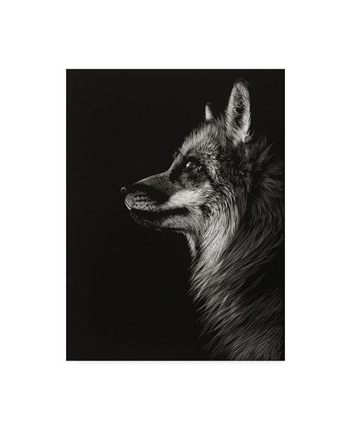 "Trademark Global Julie T. Chapman Black Glimpse V Canvas Art - 20"" x 25"""