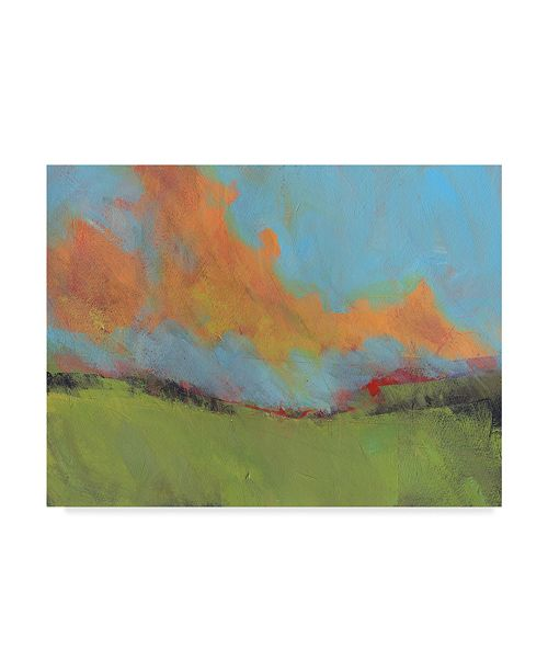 "Trademark Global Paul Bailey Last of Light Canvas Art - 20"" x 25"""