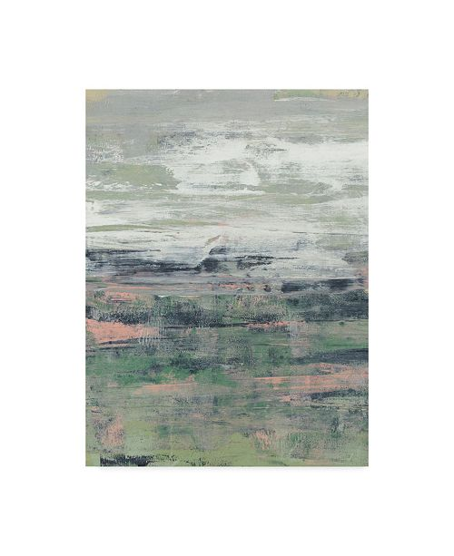 "Trademark Global Jennifer Goldberger Paynes Blush I Canvas Art - 37"" x 49"""