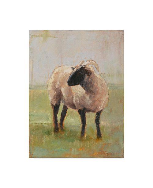 "Trademark Global Ethan Harper Away from the Flock II Canvas Art - 37"" x 49"""