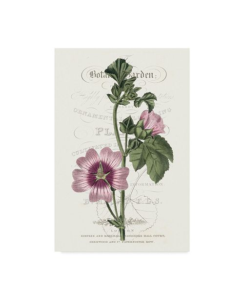 "Trademark Global Vision Studio Flower Garden Varietals IV Canvas Art - 37"" x 49"""