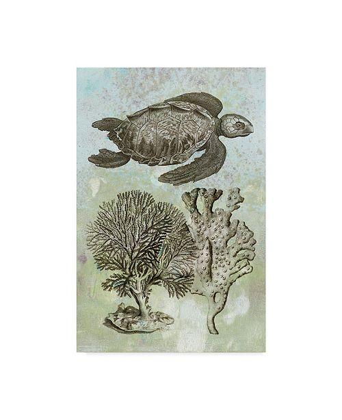 "Trademark Global Vision Studio Underwater Sea Turtle I Canvas Art - 15"" x 20"""
