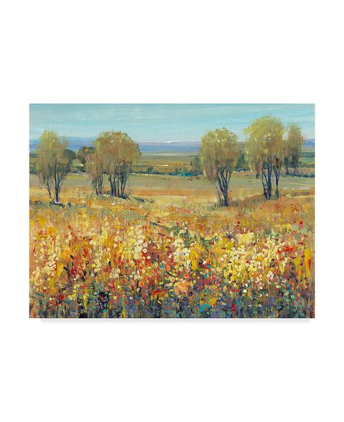 """Trademark Global Tim Otoole Golden Fields II Canvas Art - 15"""" x 20"""""""