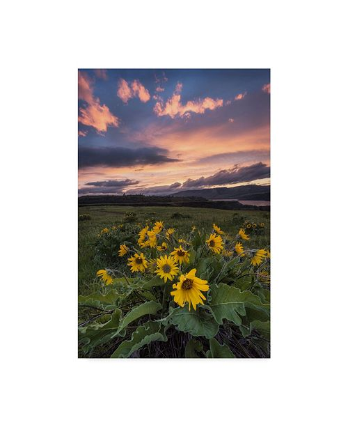 """Trademark Global Danny Head Sunset at the Gorge Canvas Art - 15"""" x 20"""""""