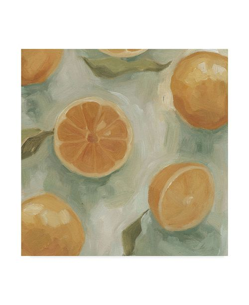 "Trademark Global Emma Scarvey Citrus Study in Oil II Canvas Art - 27"" x 33"""