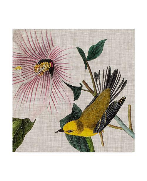 """Trademark Global John James Audubon Avian Crop V Canvas Art - 15"""" x 20"""""""
