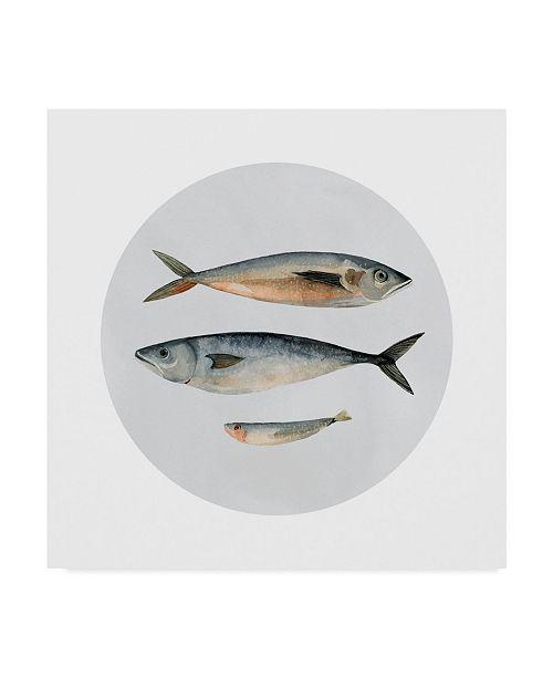 "Trademark Global Emma Scarvey Three Fish I Canvas Art - 20"" x 25"""