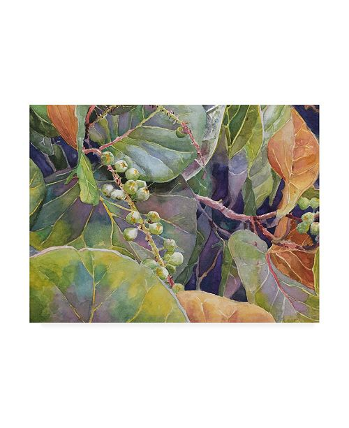 "Trademark Global Edie Fagan Sea Grapes II Canvas Art - 20"" x 25"""