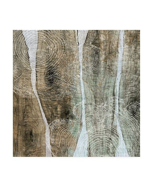 "Trademark Global John Butler Live Edge IV Canvas Art - 15"" x 20"""