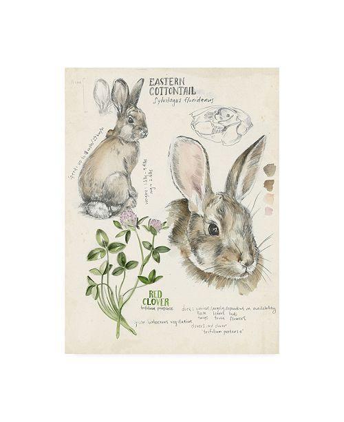 "Trademark Global Jennifer Paxton Parker Wildlife Journals II Canvas Art - 15"" x 20"""