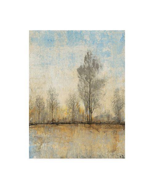 "Trademark Global Tim Otoole Quiet Nature I Canvas Art - 15"" x 20"""