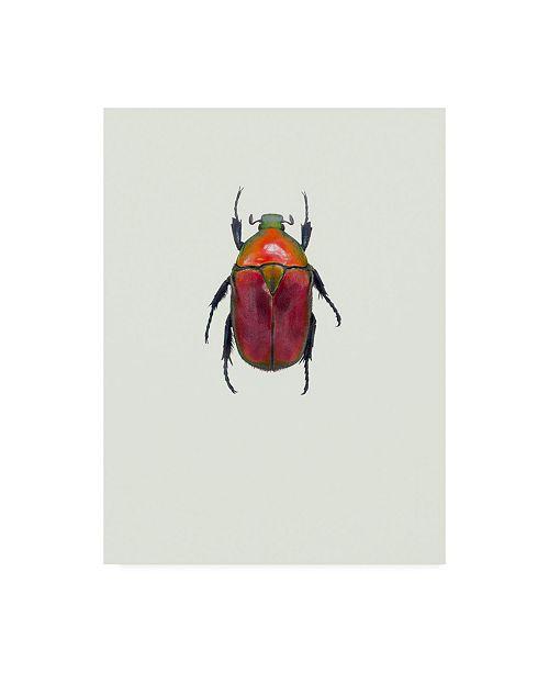 "Trademark Global Incado Torynorrhina Flammea Canvas Art - 15.5"" x 21"""