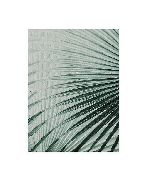"Trademark Global Incado Close up II Tropic Canvas Art - 19.5"" x 26"""