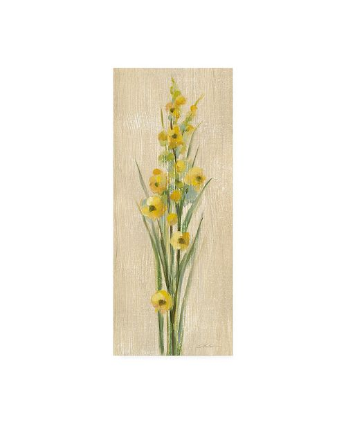 "Trademark Global Silvia Vassileva Farm Flower III Canvas Art - 36.5"" x 48"""
