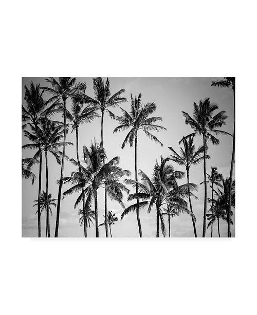 """Trademark Global Design Fabrikken Palm Heaven Fabrikken Canvas Art - 27"""" x 33.5"""""""