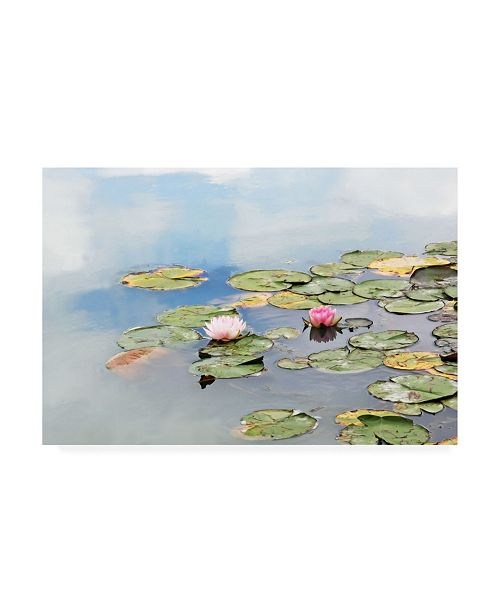 "Trademark Global Brooke T. Ryan Monet's Garden Lily Pads Canvas Art - 36.5"" x 48"""