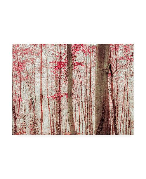 "Trademark Global Brooke T. Ryan Pink & Brown Fantasy Forest Canvas Art - 27"" x 33.5"""