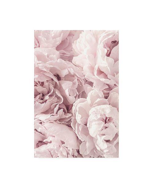 "Trademark Global PhotoINC Studio Peony Flowers Canvas Art - 27"" x 33.5"""