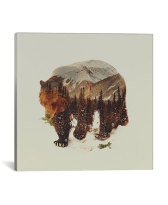 """Bear I by Andreas Lie Wrapped Canvas Print - 26"""" x 26"""""""