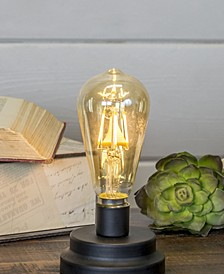 Natural Decorative Light with Metal Base