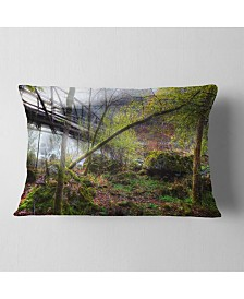 "Designart Creek and Bridge with Sunbeams Landscape Photography Throw Pillow - 12"" x 20"""