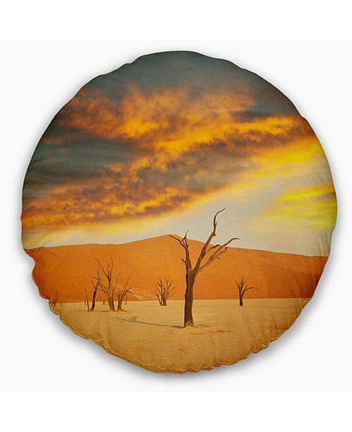 Design Art Designart Colorful Death Valley With Dry Trees African Landscape Printed Throw Pillow 20 Round Reviews Decorative Throw Pillows Bed Bath Macy S