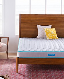 "Collection 6"" Dura Support Innerspring Mattress, Twin XL"