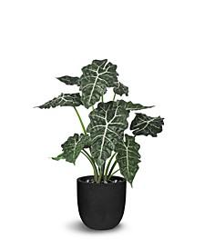 "Artificial Plants Alocasia 27"""