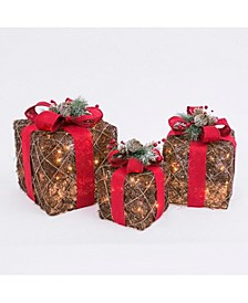 Assorted Electric Gift Boxes with Natural Vine with a Red Burlap Ribbon Accent - Set of 3