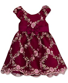 Baby Girls Embroidered Mesh Dress