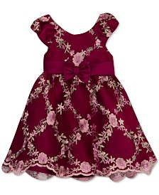 Rare Editions Baby Girls Embroidered Mesh Dress