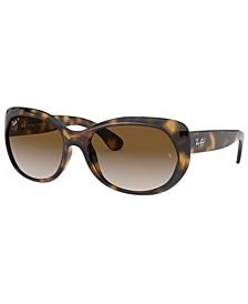 Sunglasses, RB4325 59