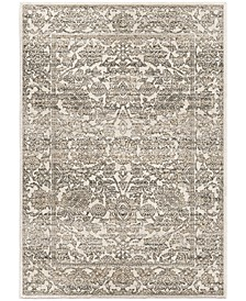 Riverstone Persian Tonal Light Gray 9 'x 13' Area Rug
