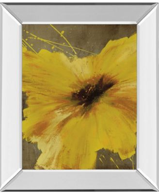 "Colorful Flowers Il by Bridges Mirror Framed Print Wall Art - 22"" x 26"""