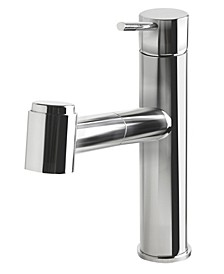 Polished Stainless Steel Kitchen Faucet with Pull-Out Spray