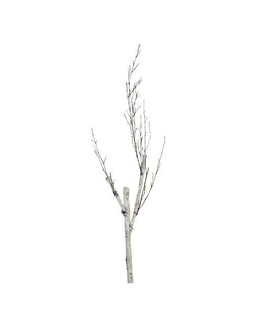 "Northlight 46.5"" White and Brown Birch Branch Decoration"