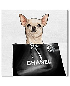 Chihuahua Glam II Canvas Art Collection