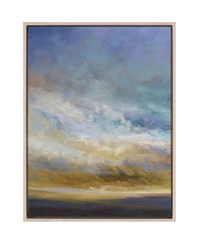 "Paragon Coastal Clouds I Framed Wall Art, 42"" x 32"""