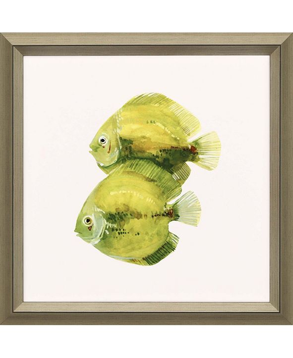 "Paragon Discus Fish II Framed Wall Art, 30"" x 30"""
