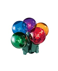 20 Multi-Color Transparent G40 Globe Christmas Lights - 19 ft Green Wire