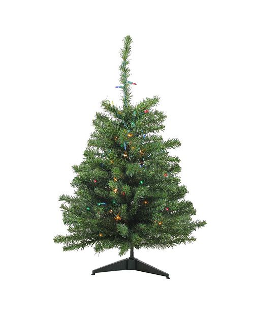 Northlight 3' Pre-Lit Canadian Pine Artificial Christmas Tree - Multi Lights